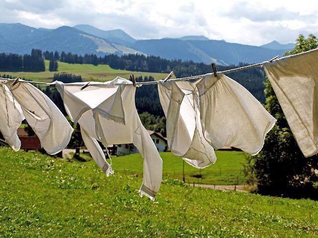 写真、洗濯物