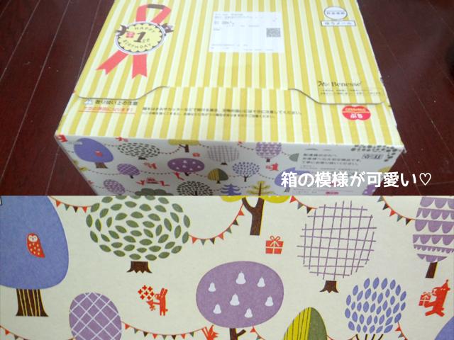 『こどもちゃれんじ』の『1歳のおたんじょうび特別号』のBOX