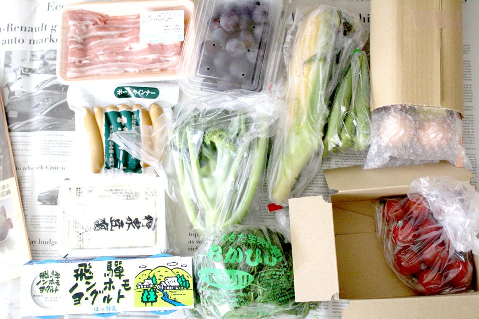 大地宅配【基本の食材12品(11品)お試しセット】